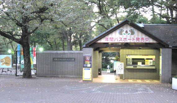 動物園 井の頭